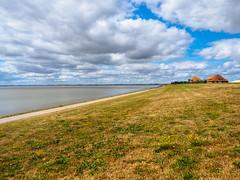 Nordsee - so weit das Auge reicht (mohnblume2013) Tags: nordsee meer wasser strand deich landschaft outdoor rasen