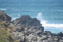 Cliffs with the waves. (Working hard for high quality.) Tags: water wave blue cliff newquay rock formation ripple grass green summer fistral