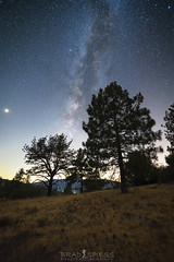 Reaching for the Stars (ihikesandiego) Tags: cuyamaca mountains milky way trees san diego night sky