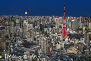 Tokyo Tower and Full Moon Cityscape