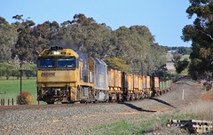 NR115 and AN1 lead a shortish PM4 steel train between Jung and Murtoa (bukk05) Tags: nr115 railpage:class=37 railpage:loco=nr115 rpaunrclass rpaunrclassnr115 an1 nrclass nr nationalrail an anclass anr wimmera westernstandardgaugeline winter wagons explore export engine emd electromotivediesel emd16710g3a railway railroad railpage rp3 rail railwaystation railwaystations train tracks tamron tamron16300 trains yarriambiackshire yarriambiack pm4 photograph photo pn pacificnational loco locomotive horsepower hp jt46c ge ge7fdl16 flickr freight diesel station standardgauge sg australia artc canon60d cv409i victoria vr victorianrailway vline victorianrailways steel mainline 2018 jung murtoa trees smoke
