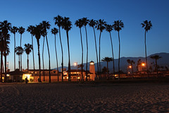 Santa Barbara Sunset (russ david) Tags: santa barbara sunset stearns wharf june 2018 ca california pacific ocean palm trees beach silhouette blue hour