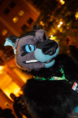 FOX_2677 (Kyoto Fox) Tags: nfc nfc2018 nordicfuzzcon nordic fuzz con sweden furry fursuit fursuits
