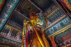 The giant Buddha / Гигантский Будда (Vladimir Zhdanov) Tags: travel china beijing yonghegong buddha temple sculpture ancient wall architecture building