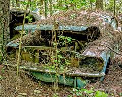 Old Car City 113 (augphoto) Tags: augphotoimagery abandoned auto automobile car decay old weathered white georgia unitedstates