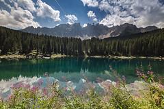 Lago di Carezza, The Dolomites, Italy (Erroba) Tags: canon 5d markiii italy flower landscape dolomites lake reflections nature leefilter tirol