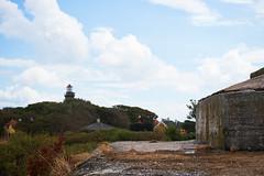 DSC02148-1 (alavrsen) Tags: hirsholmene denmark island nature sanctuary protedted sea seascape stones landscape rocks birds wildlife wildnature vegetation boat frederikshavn
