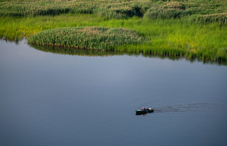 Nistru Fisherman