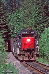 The Evergreen Tunnel (C.P. Kirkie) Tags: southernpacific sp willamettepacific wprr toledohauler toledobranch toledo gp40 emd freighttrain forest coastrange oregon geneseewyoming trains railroads