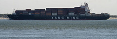 YM Enlightenment (Mark A.H.) Tags: flushing netherlands 2august2018 nederland vlissingen water ship vessel container ymenlightenment ym yangming liberia 636016703 d5hj2 cargo hazard schip 2015 a