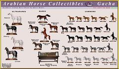 Elite Equestrian's Arabian Horse Model Collectibles Gacha (honeyheart1) Tags: sl secondlife arab arabian black bay mahoganybay dapple darkdapple gray proud halter gacha eliteequestrian realhorse