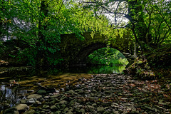The Hidden Bridge (scottprice16) Tags: england lancashire clitheroe henthorn edisford ribblevalley ribbleway mearleybrook summer 2018 august trees braches sunlight stones water stream arch stone brrok sonyrx100m3
