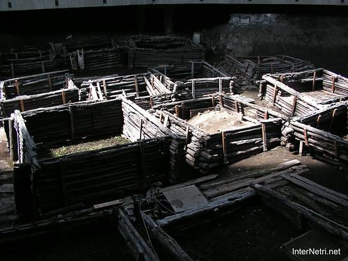 Стародавнє Берестя InterNetri.Net  398