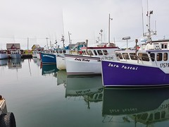 Day 5 - Lobster boats at Grande Entree Island.  The harbour hosts the largest fleet of boats in Les Iles de la Madeleine (Bobcatnorth) Tags: lesilesdelamadeleine magdalenislands quebec canada summer 2018 cycling velo bicycle bicycling cycletouring bicycletouring touring tourdevelo gulfofstlawrence
