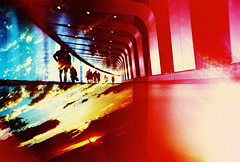 Lomo – riot of colour (lomomowlem) Tags: 35mm analogue crossprocess colourstreambrighton clouds doubleexposure expiredfilm kodakelitechrome kingscrossstpancras lomo lomography lca lofi london multipleexposure silhouette sunset tunnel urban underground xpro xprocess