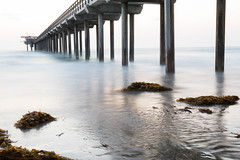 Scripps Pier Long Exposure (Photos By Clark) Tags: california lajolla beachshots subjects northamerica location canon2470 canon5div unitedstates sandiego cities locale places where us pacific water longexposure waves ocean blue aftersunset tripod seaweed thesandiegoist 15seconds