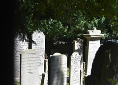Middelburg (Omroep Zeeland) Tags: begraafplaats joodsebegraafplaats asjkenazischejoden walensingel middelburg