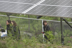 170605_3351_solargrafton045.JPG (greentufts) Tags: grafton cummingsschool veterinaryschool solar sustainability cleanenergy renewableenergy technology mass unitedstates usa