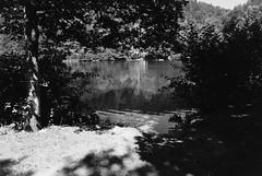 Die Hitze des Sommers (Manfred Hofmann) Tags: analog brd jahreszeiten kurpfalz orte projekte flickr öffentlich beilambrecht pfalz
