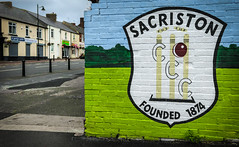 Sacriston CCC. (CWhatPhotos) Tags: sacriston colliery cricket club art work mural wall north east england uk county durham green street photographs photograph pics pictures pic picture image images foto fotos photography artistic cwhatphotos that have which with contain olympus digital camera lens