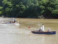 24 June 2018 Calstock (32) (togetherthroughlife) Tags: 2018 june cornwall calstock victoria boat river rivertamar
