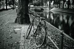 Bokeh@Kö, Düsseldorf 2018 Summer 3 (Amselchen) Tags: bicycle street water germany bokeh blur dof depthoffield season summer bnw blackandwhite sony a7rii sonyilce7rm2 sigmamc11 canon ef50mmf14usm