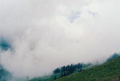 Near the summit, still in the clouds (mkk707) Tags: film meinfilmlab analog wwwmeinfilmlabde leicar7 leicasummiluxr50mm2ndmodel11776 itsaleica vintagelens vintagefilmcamera clouds