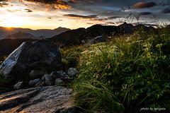 DSC05604 (tetugeta) Tags: mountain nature landscape nippon japan