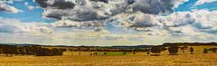 Abgeerntet (günter mengedoth) Tags: carlzeissjenabiometar80mmf28 carl zeiss jena biometar 80 mm f 28 vintagelens manuell wolken panorama