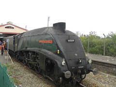 60009 Union of South Africa (JIsaac92) Tags: 60009 union south africa no9 gresley a4 uosa london paddington isambard kingdom brunel the west somerset express frome station