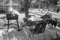 (Monsieur Marchi) Tags: leicam4p summicron35mmf2v4 kentucky nonno lexington ilford fp4 bw usa backyard grill grandpa dogs shade