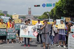 """轉型正義是假的!巴奈在凱道為蔡英文 貼上騙子標籤Promoting Indigenous Restorative Justice is false. Panai Kusui marks President Tsai Ing-wen as """"a liar"""". (*dans) Tags: atjc panaikusui nabuhusungan taiwan taipei ketagalanblvd taiwanaboriginal transitionaljustice photojournalism 原住民傳統領域 沒有人是局外人 原轉小教室 轉型正義 巴奈庫穗 馬躍比吼 凱道部落 台灣 原住民 danielmshih 施銘成formosalily 一起陪原住民族劃出回家的路 一起連署搶救我們的山海與縱谷 傳統領域不打折 原住民族歷史正義與轉型正義 凱道小講堂 indigenoustransformativejustice transformativejustice 修復式正義 restorativejustice巴奈庫穗 巴奈 panai mayawbiho 那布 nabuhusungantaiwantaipei凱道部落ketagalanblvdketagalantribe凱道凱達格蘭大道228公園二二八公園taipeitaiwanaboriginaltawianaboriginal"""