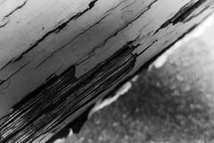 Chipping Paint - HMM (Thad Zajdowicz) Tags: macromondays decay leica macro zajdowicz pasadena california blackandwhite bw black white monochrome wood paint texture bokeh
