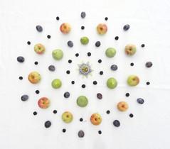 L'arte della vita (Scagliediterra) Tags: art arte fruit frutta creazioni creation creativity colors colori food cibo