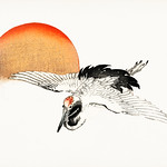 Flying Barn swallow by Kōno Bairei (1844-1895) Digitally enhanced from our own original 1913 edition. thumbnail