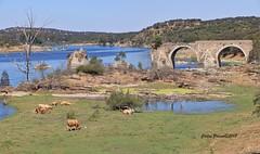 Alentejo (cpscoa) Tags: portugal guadiana canon rio alentejo fronteira