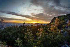 _DSC1690-1 (Hong Yu Wang) Tags: sony a73 a7iii a7m3 1224g 合歡山 落日 夕陽 sunset taiwan mthehuan