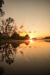 Comme un feu d'artifice (2) (photosenvrac) Tags: couleur eau leverdesoleil loire miroir nature paysage