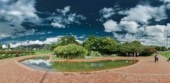 jardin parque Virgilio Barco (Luis FrancoR) Tags: jardinparquevirgiliobarco jardin garden bogotá green blue ngw ng ngc ngs ngd ngg
