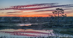 Kauhaneva - Kauhaneva National Park in western part of Finland (teetaira) Tags: nationalpark kauhaneva finland nature luontokuva naturephography maisema landscape sunrise fog mist usva clouds pilvet vastavalo backlit suo neva swamp heijastus reflection nikon d850 kansallispuisto