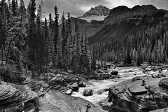 Mistaya River Flowing By and Through the Peak of the Canadian Rockies (Black & White, Banff National Park) (thor_mark ) Tags: nikond800e day4 triptoalbertaandbritishcolumbia icefieldsparkway banffnationalpark lookingssw mountsarbach kaufmanpeaks mistayariver river blackwhite silverefexpro2 capturenx2edited colorefexpro outside nature landscape mostlycloudy overcast rockymountains canadianrockies mountains mountainsindistance mountainsoffindistance trees evergreens hillsideoftrees hillsideofrocksandboulders boulders largerocks mistayacanyon riverbank alongbanksofmistayariver snowcapped mountainvalley travelingicefieldsparkway travelingtheicefieldsparkway walktomistayacanyon centralmainranges waputikmountains northwaputikmountains christianpeak hanspeak mistayacanyonarea project365 alberta canada