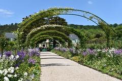 Claude Monet gardens (msuanrc) Tags: garden trees monet