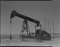 pump jack on 4x5 film (Garrett Meyers) Tags: autograflex4x5 garrett meyers garrettmeyers film filmphotographer pump jack pumpjack largeformat 4x5film graflex graflex4x5 oil oildale california desert homedeveloped