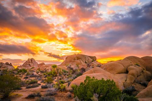 Skull Rock Joshua Tree National Park Fine Skull Rock Sunset