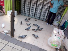 180620 Masjid India 71 (Haris Abdul Rahman) Tags: streetphotography masjidindia leica leicacl typ7323 harisrahmancom harisabdulrahman fotobyhariscom kualalumpur bazaar supervarioelmartl1123135451123asph wilayahpersekutuankualalumpur malaysia