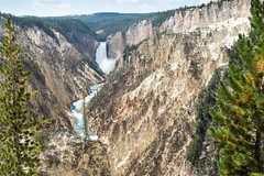 U.S.A. - Yellowstone National Park (jf garbez) Tags: 24120mm amériquedunord canyon cascade chute chutedeau coursdeau d600 fall forest forêt gorge gorges landscape nikkor nikkor2401200mmf4 nikon nikond600 northamerica paysage river rivière usa unitedstates unitedstatesofamerica vegetation végétation watercourse waterfall wyoming yellowstonenationalpark étatsunis grandcanyonoftheyellowstone