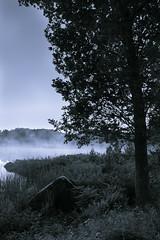 Orlundensee (Südschweden) (Traumfotos Trautmann) Tags: baum blauestunde nebel orlunden orlundensee schweden see dämmerung abenddämmerung spiegelung reflexion südschweden ströbyn sweden sverige tree träd sjö ufer shore sjön fog foggy dust dusty dimma dunst schwarzweiss blackandwhite canoneos5dii canoneos5dmarkii canonef241054lisusm farn himmel wald wasser sea water gewässer landschaft landscape
