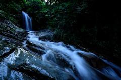 不動の滝、雨後 #2ーFudo Waterfall, After the heavy rain #2 (kurumaebi) Tags: yamaguchi 秋穂 山口市 nikon d750 nature landscape 滝 waterfall