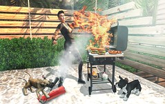 #228 (Neo Concept) Tags: junk food grilling set flames fire extinguisher saved by dogs real heros