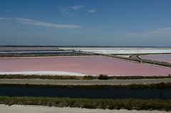 I colori delle saline I, Aigues-Mortes. August 2017 (VirgiVerde) Tags: saline salines landscape pink rosa reflection pinkwater salt sale saltproduction lefleurdusal aiguesmortes camargue france francia provencealpescôtedazur water riflesso acqua colours colori stripes strisce saltflats